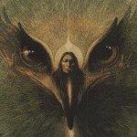 Орел использует силу бури ради собственного блага