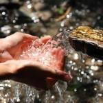 Слава Полунин: у меня есть закон — называется «ноги в воду»