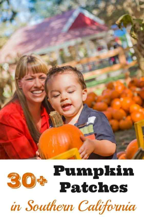 Your complete guide to 30+ Pumpkin Patches in Southern California, all the way from Santa Barbara to San Diego.