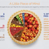 Which is the most popular pie [Infographic]