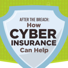 How cyber insurance helps you deal with a data breach [Infographic]