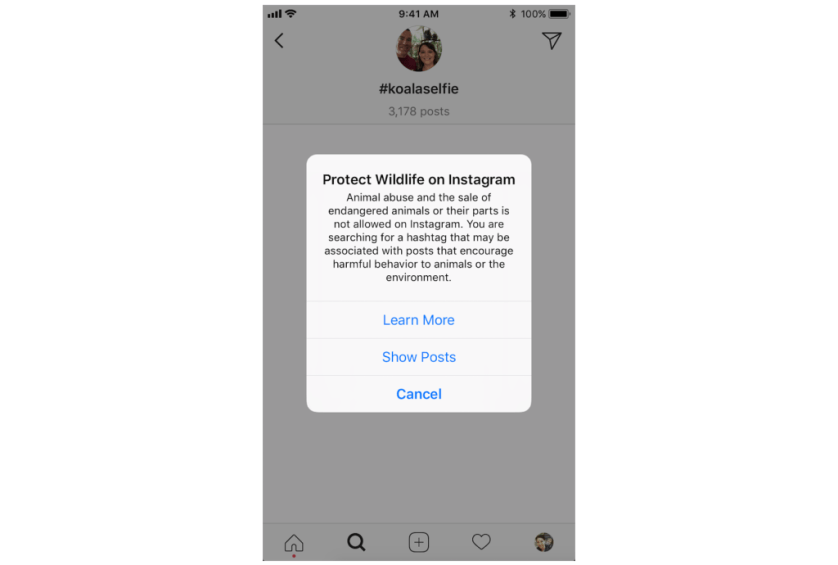 Instagram To Add Content Warnings For Selfies With Wildlife