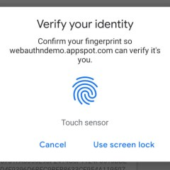 Google Chrome adds support for fingerprint sensor on Android and Mac