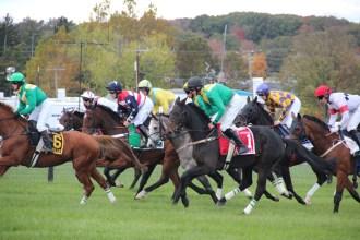Farhills Race_horse racing_open road BMW (8)