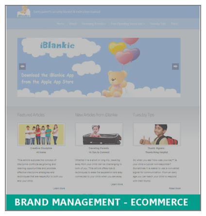 Brand Management for eCommerce Retailer