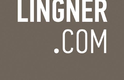 Social Media Strategie, Lingner Logo