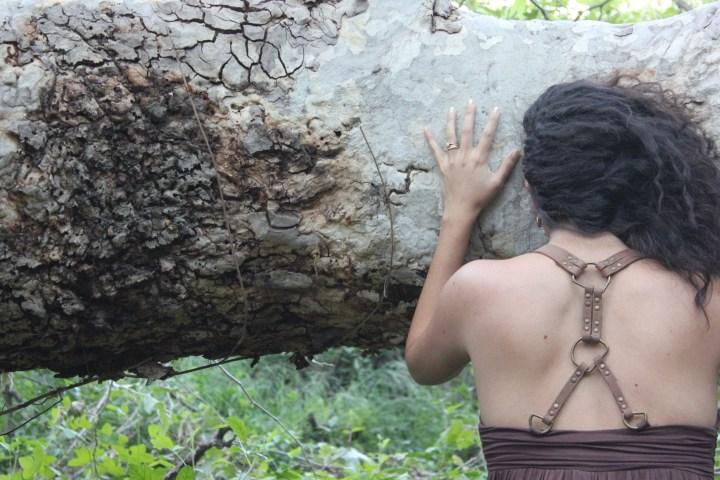 Sofia + Tree
