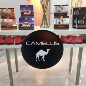 Terbaik Dari PalmaBrand – Produk Susu Unta Camelus
