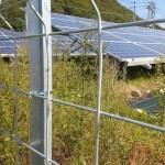 太陽光発電ムラ防衛軍の新秘密兵器:刈払機