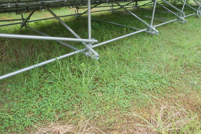 yuken氏の太陽光発電所における雑草対策