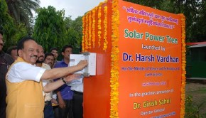 solar power tree introduced in India