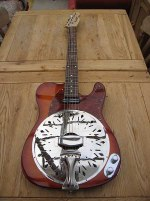 Sunburst Sollophonic with Hotrail Picup and red tortoiseshell pickguard. Rosewood neck too!!!