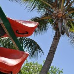 Kayak Rentals at Flamingo Marina, Everglades National Park
