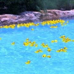 Have a SummerBlast! at Hilton Bonnet Creek this Summer
