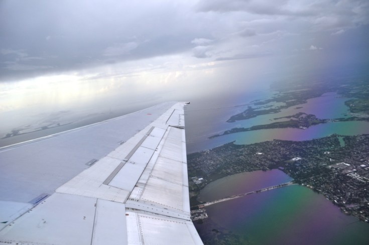 The View Above Sarasota When I Finally Took Flight