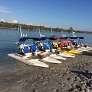 Riding the Waves in Englewood, Florida
