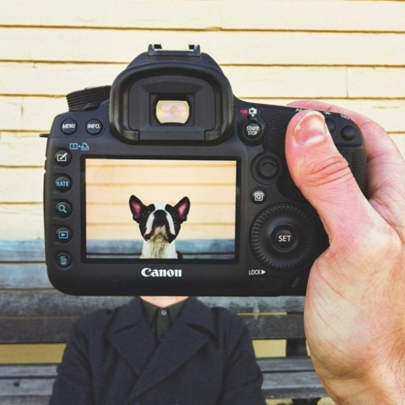 Petheadz-Portraits-of-Pets-and-Their-Owners-3