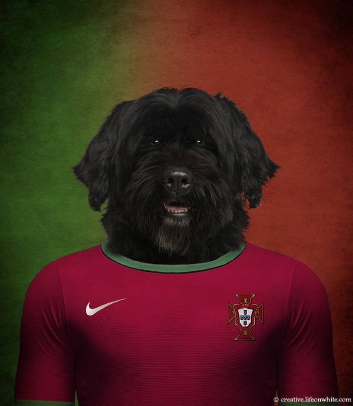 caes-selecao-portugal
