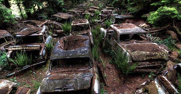 """Estacionamentos abandonados criam cenários """"pós-apocalípticos"""" no meio da floresta"""
