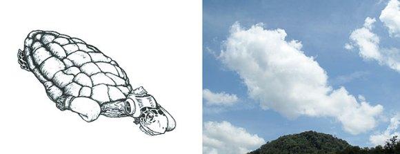 Desenho em nuvens - tartaruga (2)