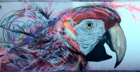 grafite spray pássaros (10)
