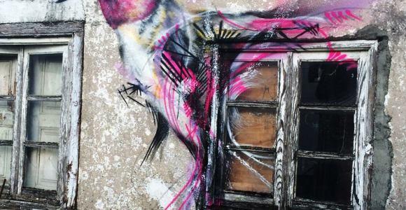 Artista brasileiro usa cores e traços frenéticos para grafitar seus pássaros mundo afora