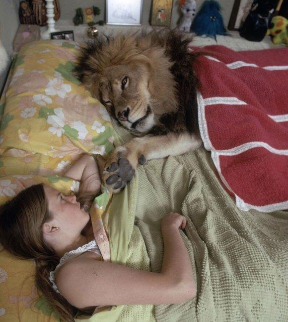 Vivendo com um Leão (10)