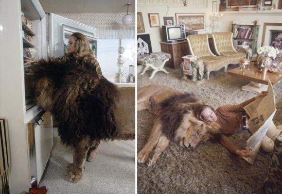 Vivendo com um Leão (6)