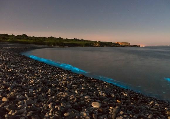 Praias luminescentes 8