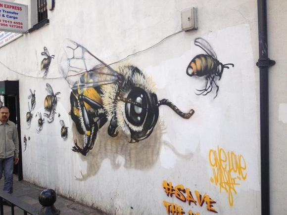 Grafite abelhas 6