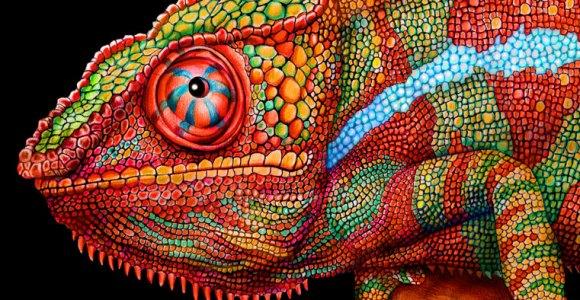Artista prova que é possível fazer desenhos incríveis usando lápis de cor