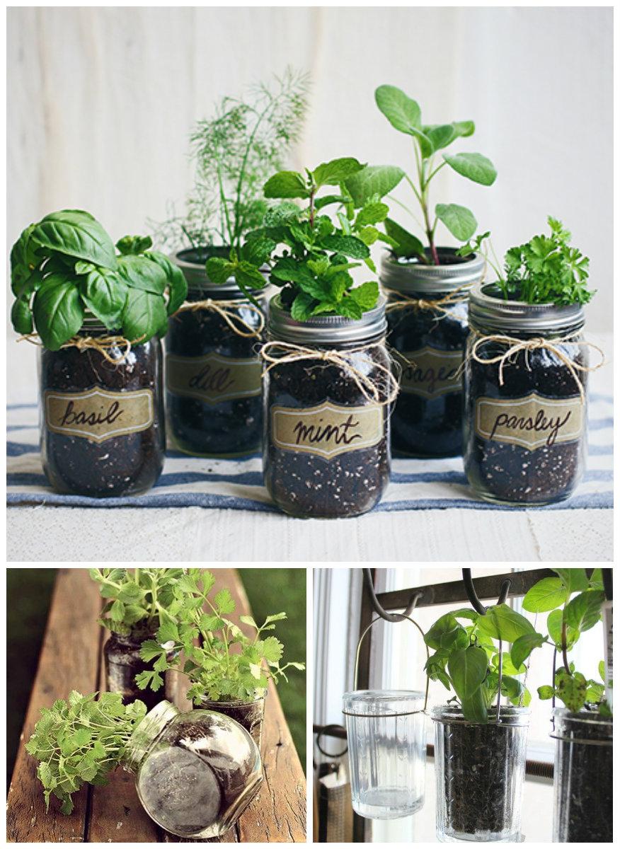 Green Planet Outubro 2015 ~ Horta De Temperos Na Cozinha
