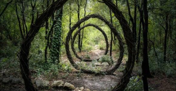 Ele passou um ano criando misteriosas esculturas naturais na floresta