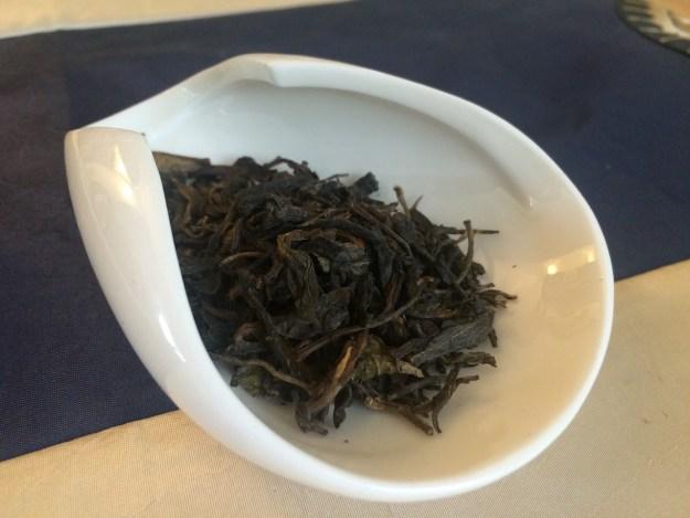 2003tongqinghao-leaf