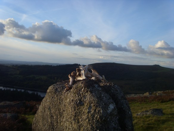 my-magic-pile-sheepstor-something-about-dartmoor-5