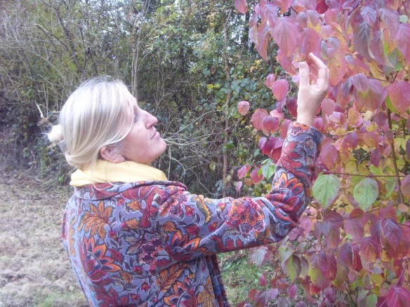 my-beautiful-sister-caitlin-in-her-multicoloured-autumn-coat-something-about-dartmoor