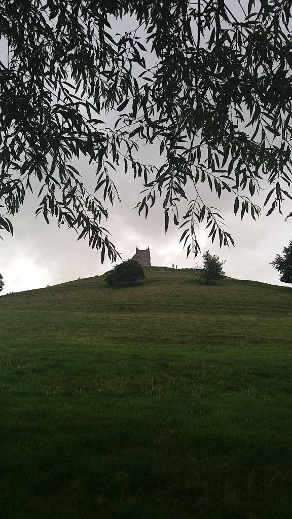 Burrow Mump from under the Willow...