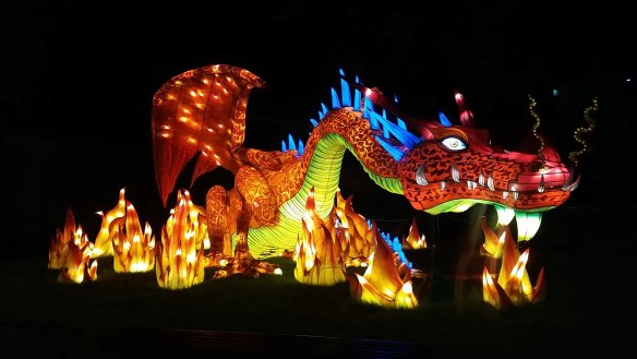 Longleat Festival Of Light. Dragon (1)