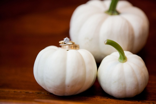 Wedding ring shot on mini-pumpkins!