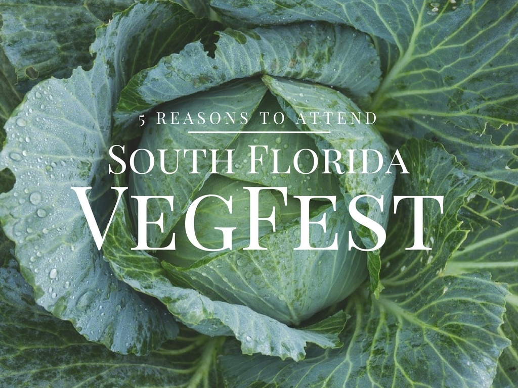 5 Reasons to Attend South Florida VegFest