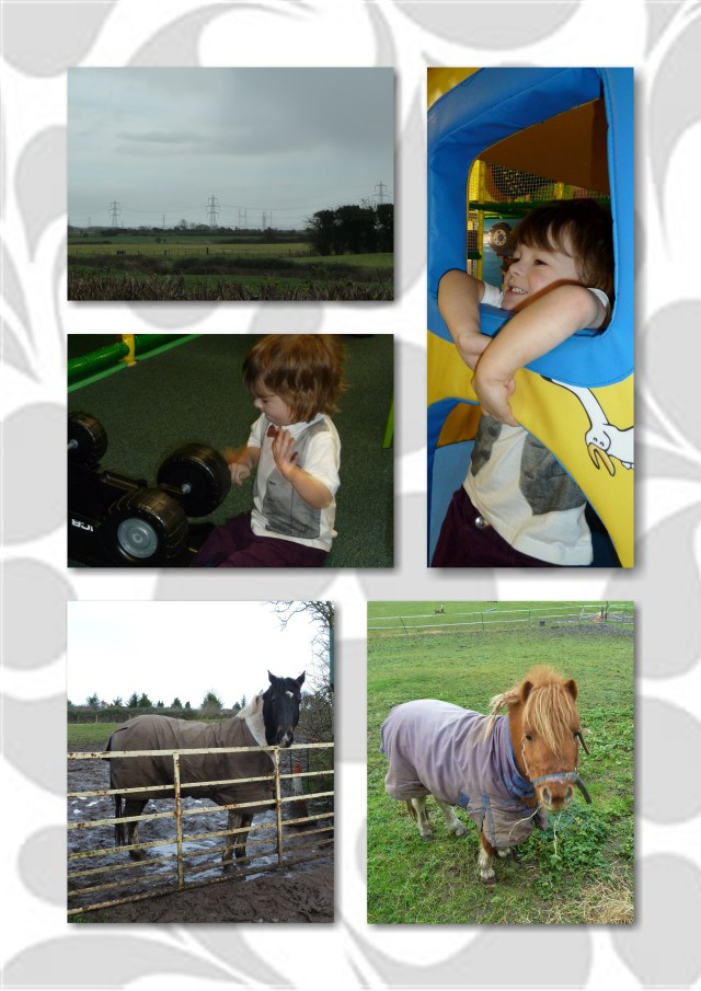 horse, pony, soft play