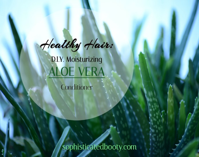 Healthy Hair D.I.Y. Moisturizing Aloe Vera Conditioner - Sophisticated Booty