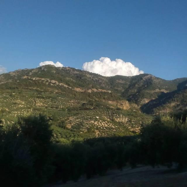 Nubes que parecen de algodn densas y con un blancohellip