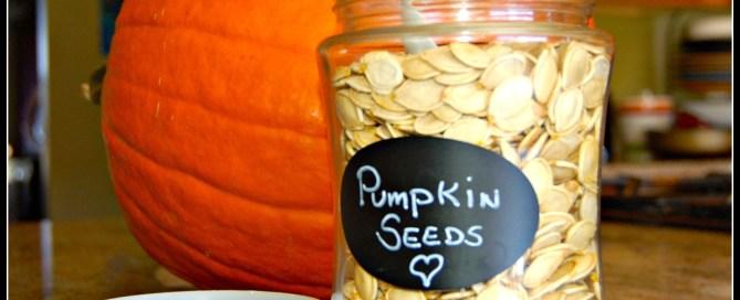 pumpkin seeds container