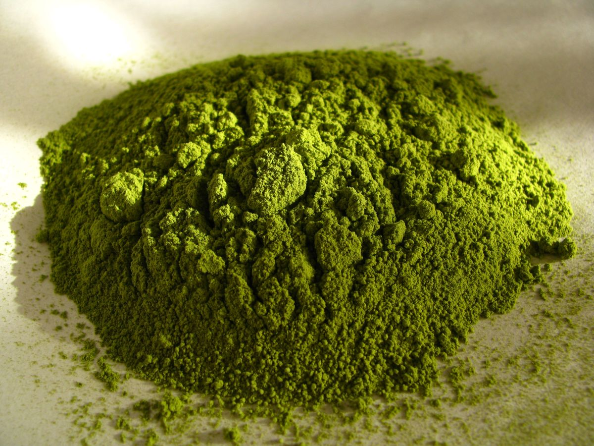 Matcha Tea: The Ultimate Green Power