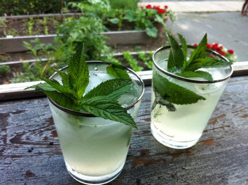 Cocktail Recipe: Mojitos