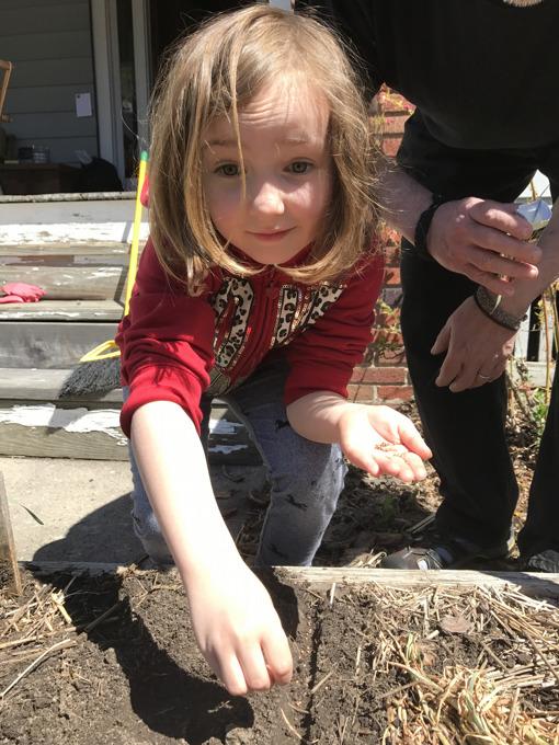 Garden Update: Planting Radishes
