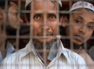 Rohingya Tragedy and Aung San Suu Kyi's 'Buddy' Solution