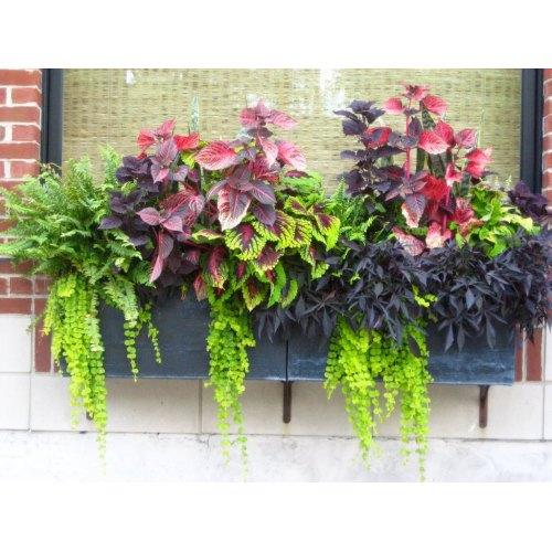 Medium Crop Of Planter Garden Boxes