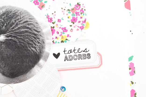 adorbs3
